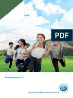 DLMI-Annual Report 2017