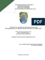 256469658-Tesis-Recoleccion-de-Gas.pdf