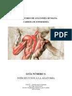 1544108154764_GUIA Nº 1 - Introduccion a La Anatomiìa Humana