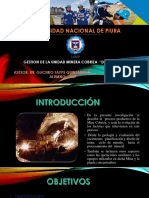 Gestion de Unidada Minera Cobriza- Doe Run