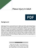 Brachial Plexus Injury in Adult