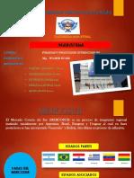 TEMA-MERCOSUR.pptx