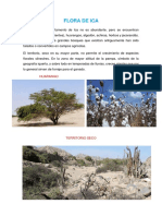 Flora y Fauna de Ica