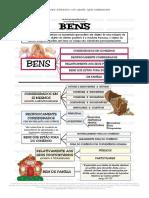 BENS.pdf