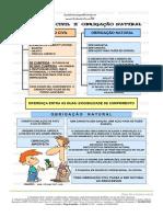 OBRIGAÇÕES CIVIS E NATURAIS.pdf
