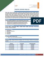 Profil Bisnis Migas.pdf
