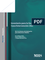Manual Igi Digitalizado