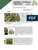 Musgos y liquenes.pdf