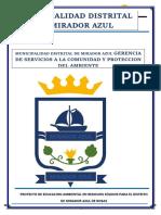 municipal solo proyectos.docx