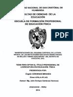 Tesis EF27_Car.pdf