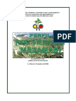 Perfil Irrigación Mazamari