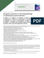 2013-MASTER JCC ECCO ESP Histopathology Consensus JCC v7