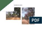 Caminhos Do Quilombo Pita Canudo