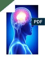 Imagenes de Tipos de Inteligencia