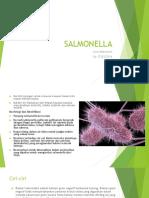 Salmonella - Livia