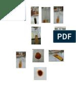 Lampiran Foto Praktikum Fitokimia 2