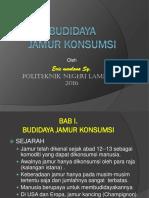 Kuliah Budidaya Jamur Konsumsi