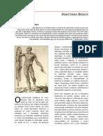 Anatomia Básica.docx