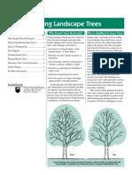 686Pruning Trees