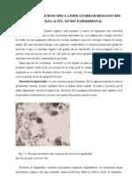 8[1]. Cap 7, Indicatori Biologici