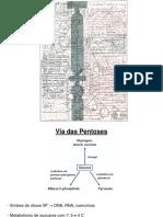 Pentoses_PSA2012.pdf