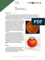 Diabetic-Retinopathy-medical-students.pdf