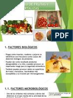305523959-Deterioro-de-Frutas-y-Hortalizas.pptx