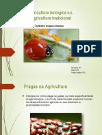 Agricultura Tradicional vs Agricultura Biológica