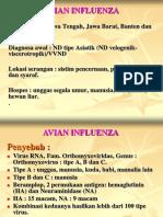 AVIAN_INFLUENZA.ppt