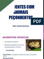 Acidentes Com Animais Peçonhentos - Ins. Otacilio