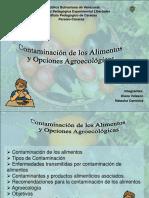 contaminaciondelosalimentos-100226082132-phpapp02.pdf