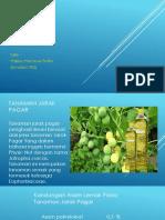 biodiesel jarak pagar.pptx