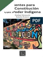 Fuentes pata una Constitución con poder indigena