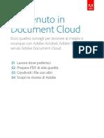Pomello PDF