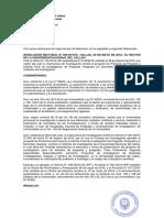 499-18-r Directiva 008 Protocolo Proyecto e Informe Finales Pre y Posgrado