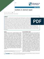Cell-matrix Interactions in Dermal Repair
