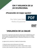 Prevencion de Enf. Ocupacionales en El Peru