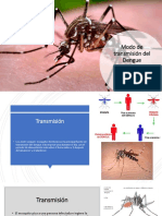 Dengue Castro