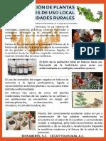 CARTEL PLANTAS MEDICINALES