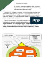 Culturi organizationale