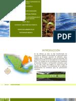 SERVICIOS AMBIENTALES ESTADO DE MÉXICO