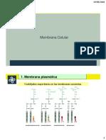 06 Menbrana.pdf