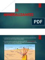 FLUIDOS MINERALIZANTES 2° expo