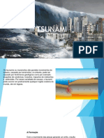 Trabalho Tsunami
