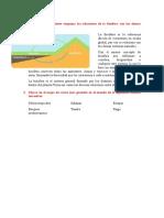 Preguntas de todos los talleres de el libro de biología 3ero bachillerato ECUADOR