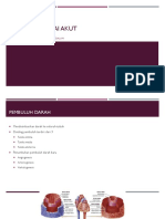 Ppt Referat - Iskemia Tungkai Akut