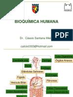 Aula 06 - Digestão de Macromoléculas