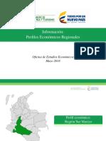 Perfil Regionales - Zona Sur Colombia