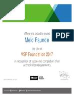 VSP Foundation 2017 - Melo Paunde