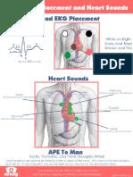5 Lead EKG Placement.pdf